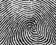 tumblr static fingerprint
